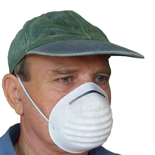 Disposable nuisance dust mask